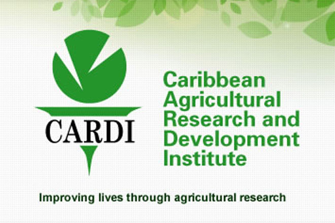 CARDI, ITC and EU to roll out 3.5 million Euro regional coconut project