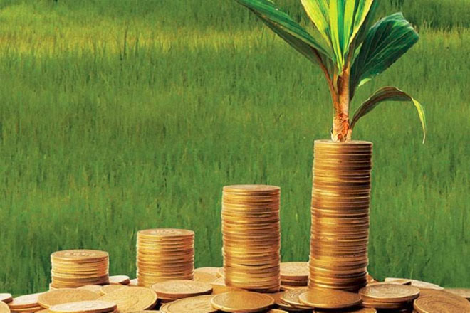 Jamaica prepares to tap into climate change fund