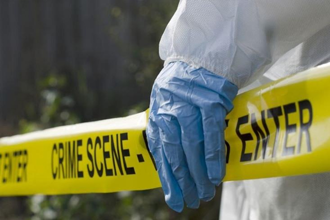 Crime Still High in Jamaica, But Some Numbers Are Falling