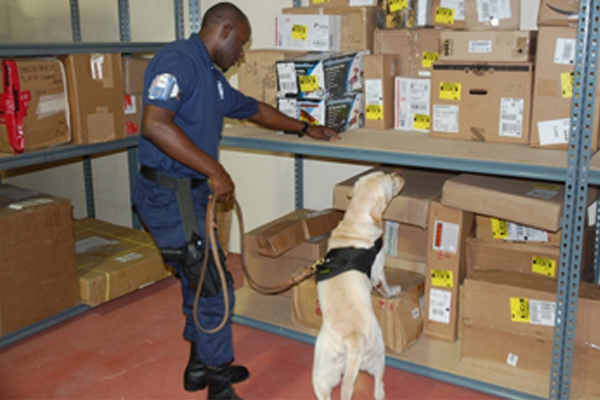 Arms and ammunition found hidden among detergent in imported barrel of foodstuff