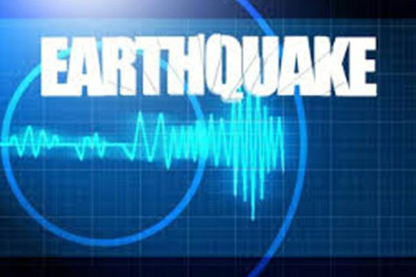 Strong quake hits Guadeloupe