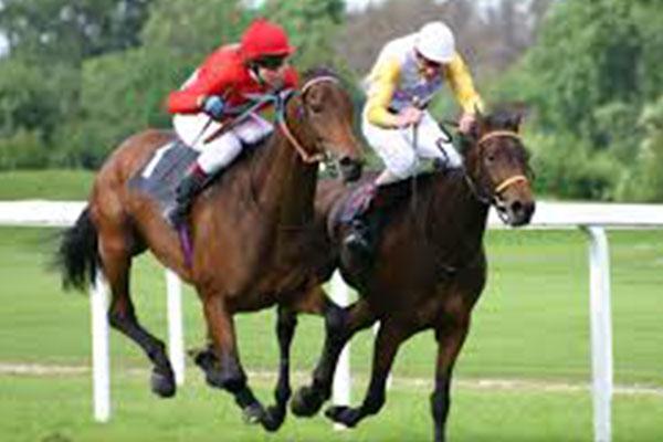 Horse Racing: Easter meet definitely on