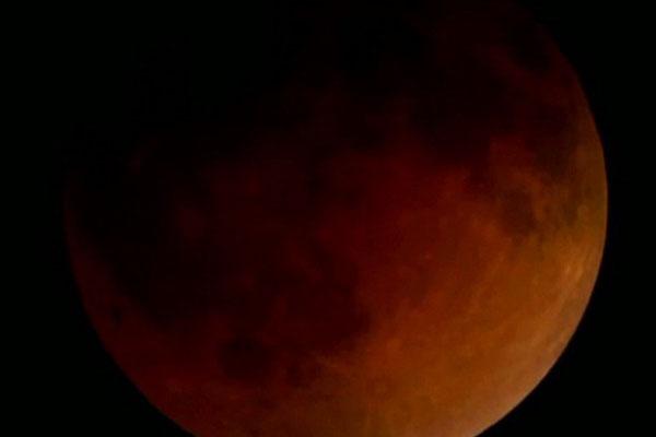 Blood moon: Sky gazers mesmerized as red hue lights up night sky