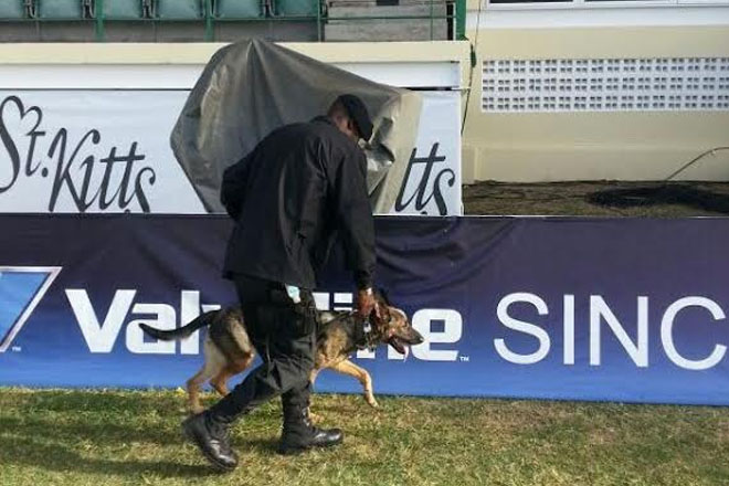 Police K-9 plays key role in international events hosting