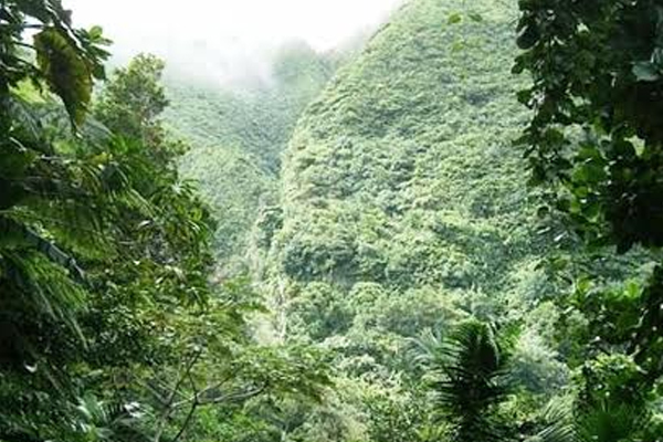 Sustainable Land Management is of significance to SKN