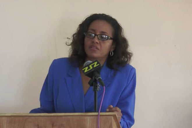 Domestic Violence Workshop Held in St. Kitts