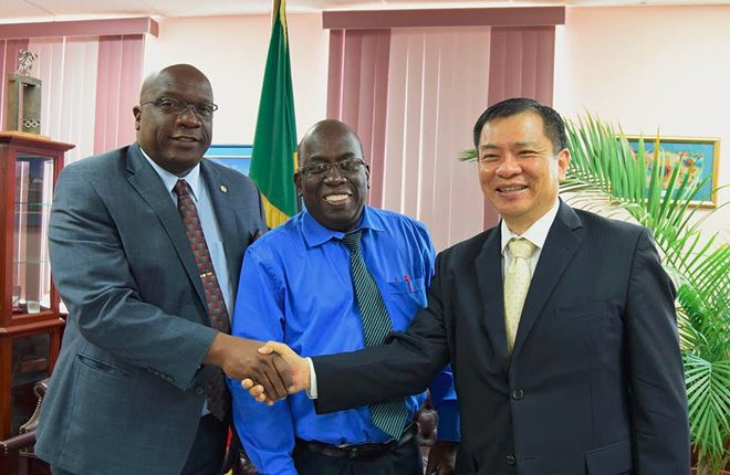 St. Kitts and Nevis to receive assistance on project targeting kidney failure
