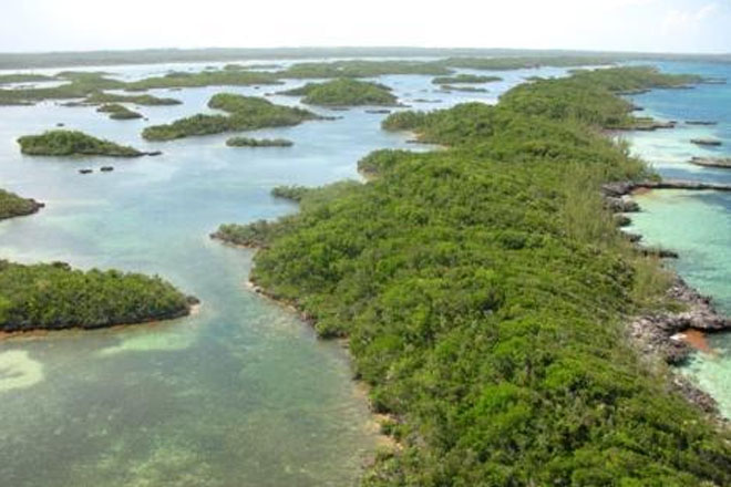 Bahamas expands marine protected areas by 4.5 million hectares