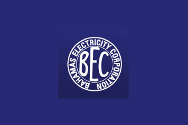 the bahamas electricity corporation should be privatized