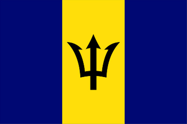 Barbados govt offers 3,000 bursaries to help students attend UWI