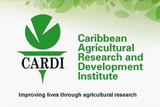 CARDI, CDB host black Sigatoka disease training workshop in Guyana