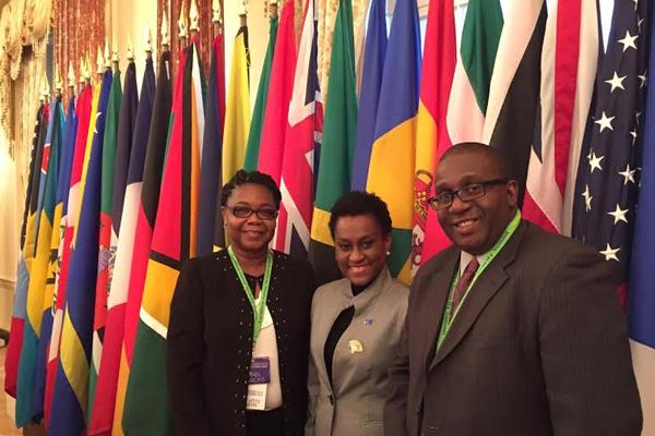 Federation represented at Washington DC Summit on Energy