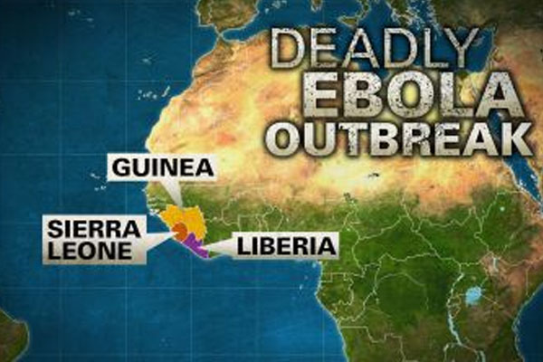 MSF and WHO trade blame over slow global Ebola response