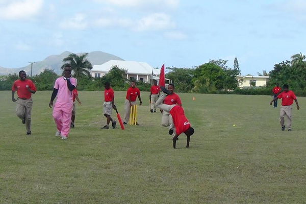 Young Cricketers entertain Four Seasons Group