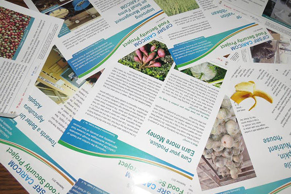 The 'farm to fork' approach to support Caribbean food and nutrition security