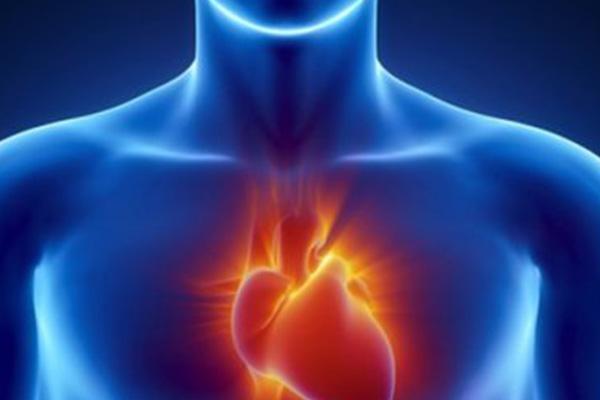 12-y-o student dies from cardiac arrest