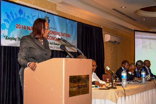 Ministry of Finance shapes National Development Strategy
