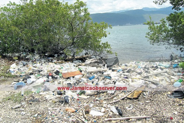 Oceans laden with 269,000 tons of plastic: study