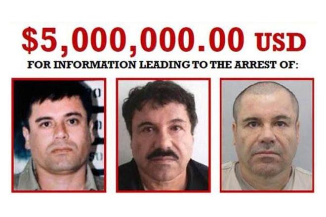 'El Chapo' recaptured after jail break
