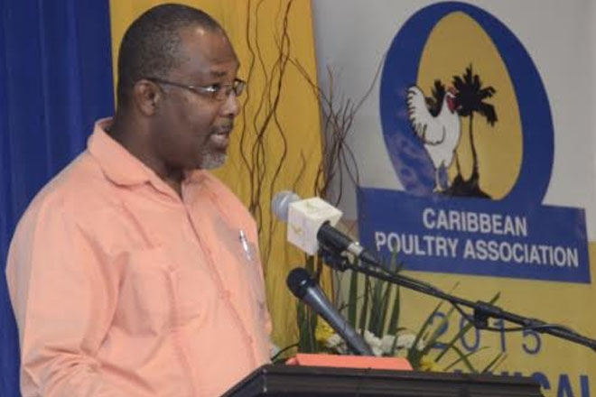 Gov't committed to protecting poultry industry from bird flu
