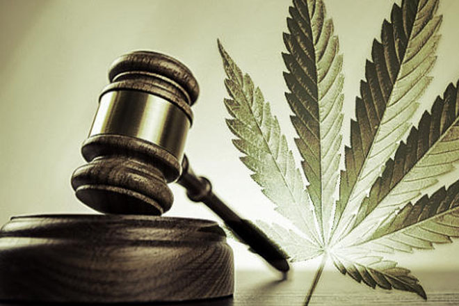 Regional commission to assess cannabis use in the Caribbean
