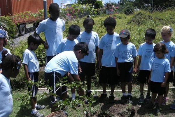 Montessori academy environment week a major success