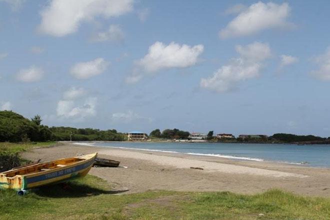 Caribbean Sea coastal beaches not affected by Sargassum, says Nevis Min. of Tourism
