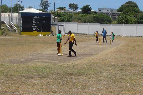 Kiddies Cricket Festival held in Nevis