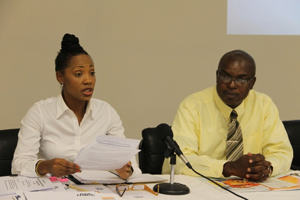 Nevis participates in OECS Secretariat consultation on awareness campaign for flood risks and mitigation