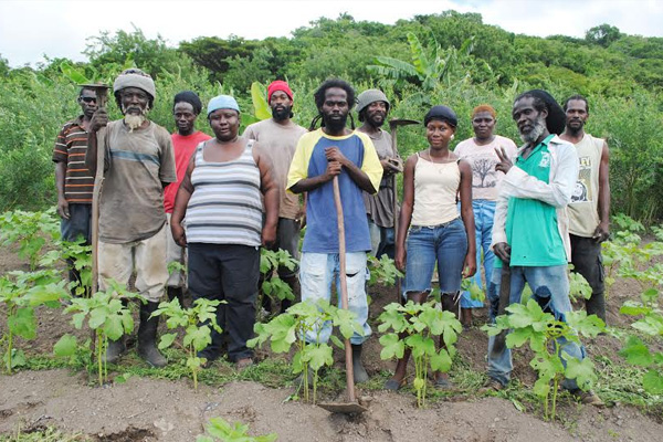 PEP working with Rasta group 'Gideon Force' to improve food security