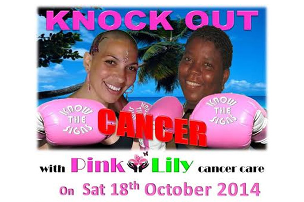 Pink Lily Cancer Care needs your help…to knock out cancer