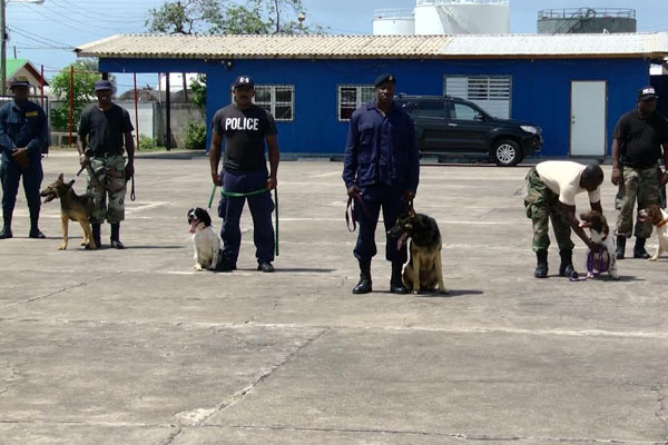 New K-9 Officers