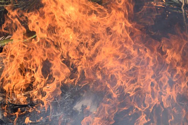 'Operation Safe Streets' leads to second marijuana burn