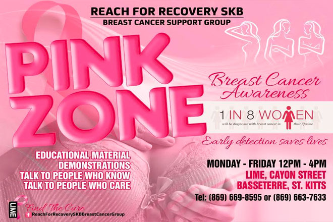 Reach for Recovery SKB hosts annual PINK ZONE