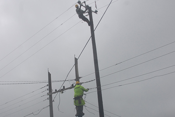 SKELEC to Train Electricians