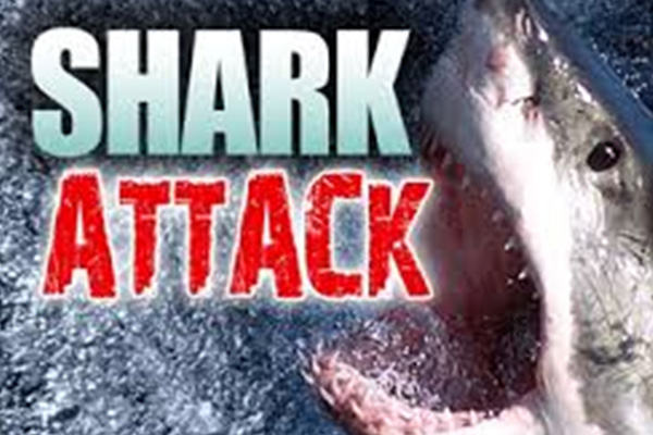 Man killed in shark attack while fishing in Hawaii