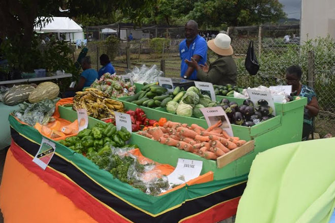 Agriculture Open Day theme encourages adaptation to global realities