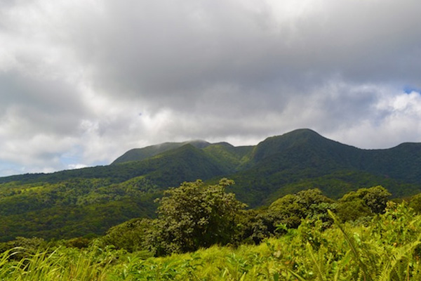 St. Kitts hiking featured on Caribbean Journal