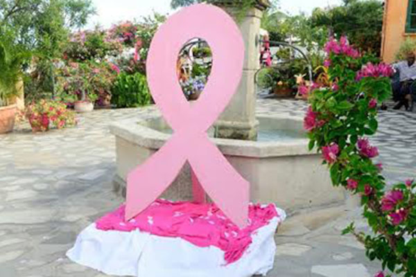 Breast Cancer Foundation Raises Funds with Tea Party