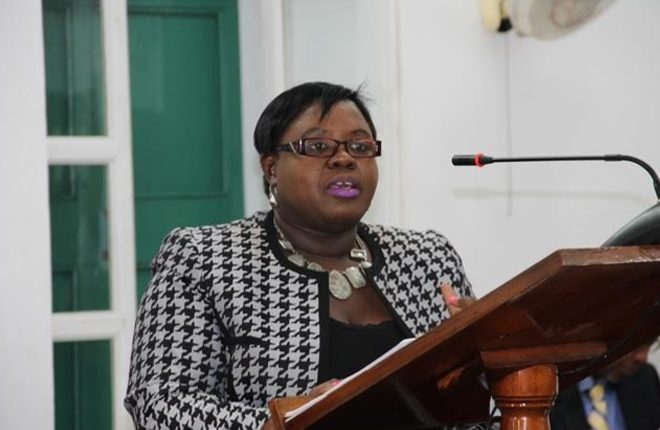13 families benefit from Social Services Department's RISE pilot programme on Nevis