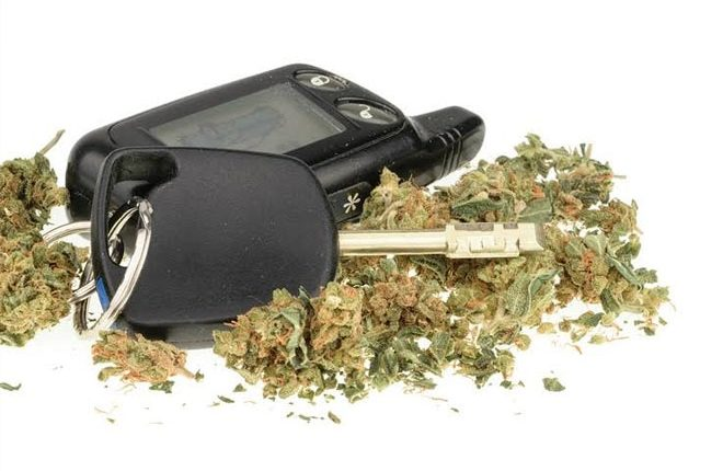 Under the Influence: Jamaicans Driving High