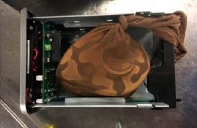 Woman Caught Trying to Smuggle Python onto Flight to Barbados