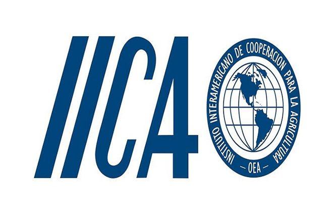 IICA Internship 2019