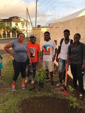 Volunteers have been planting trees around St. Kitts